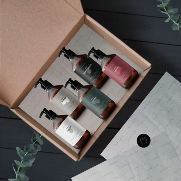 Wine Collection Kit Edition